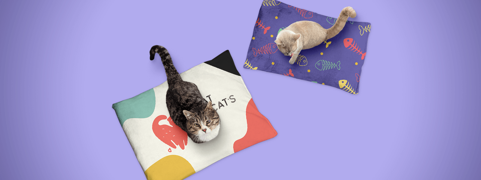 Best Recommendations for Cat Beds