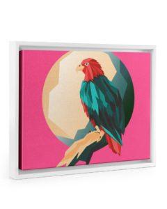 Colorful Bird Design White Floating Framed Canvas