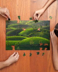 Tea Hill Jigsaw Puzzle